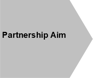 Partnership Aim shape